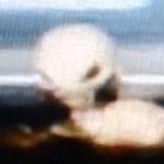 alien-under-car.jpg